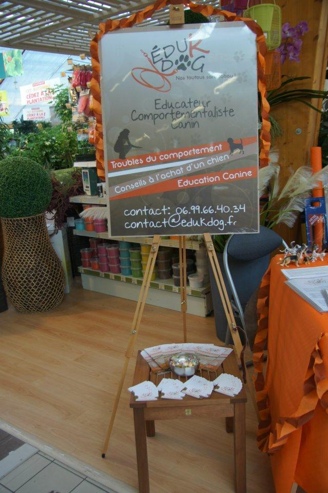 Blog edukdog education canine for Salon du chiot marseille